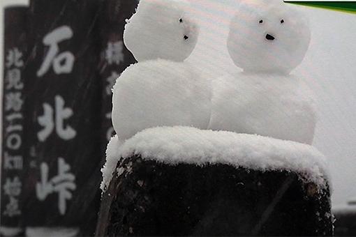 yukiyakonkonRIMG1479.jpg