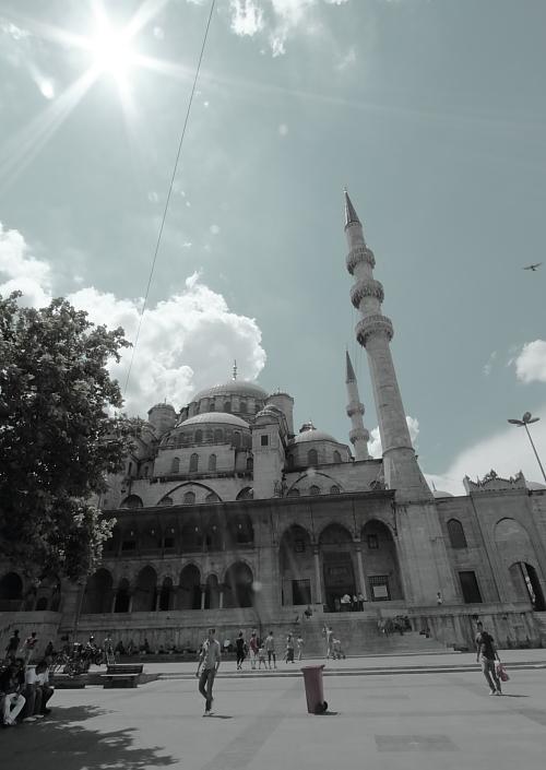 Turkey1 470-b