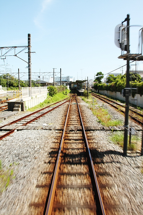 IMG_87177-b.jpg