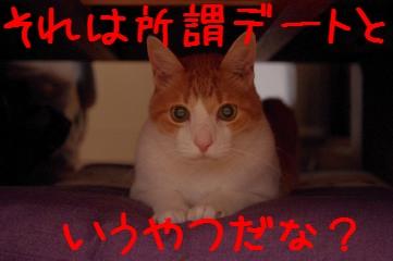 13_20110605100047.jpg