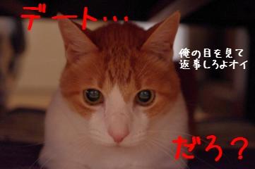 14_20110605100047.jpg