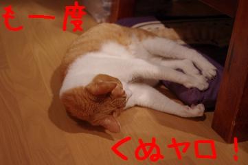 4_20110603222645.jpg