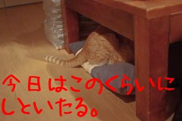 6_20110603222645.jpg