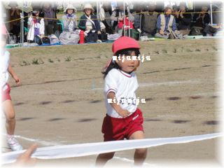 DSC00584-1.jpg
