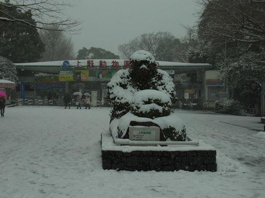 20140208雪のSAVOIA (1)