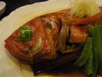 20140402魚四季 (10)