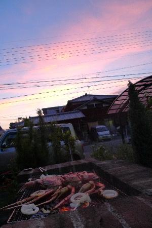 2010_0902花0059