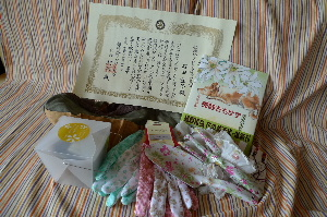 2010_0828花0048