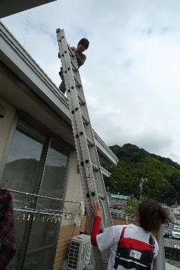 2010_1010花0016