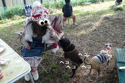 2010_1107花0091