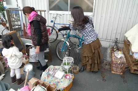 2010_1113花0073