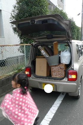 2010_1113花0077