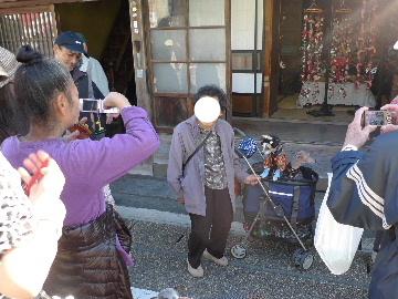 2010_1121花0133