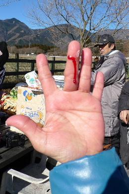2011_0102花0136