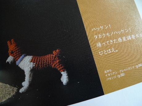 2011_0105花0008