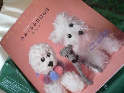 2011_0105花0006