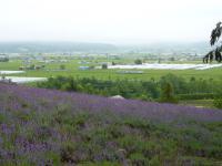 201107釧路 012