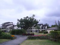 201201沖縄 023