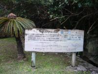 201201沖縄 045
