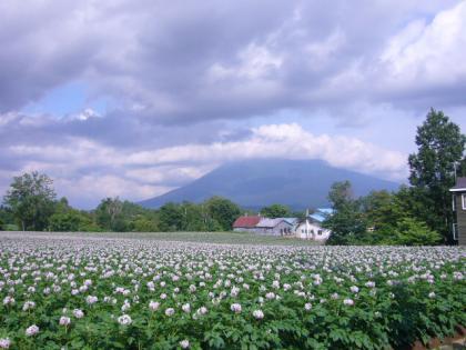201207北海道 011