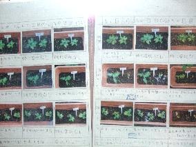 DSCF3524.jpg