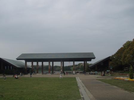 P4160174.jpg