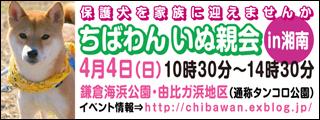 shounan20100404_320x120.jpg