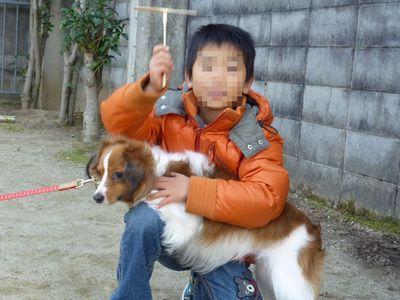 竹トンボとミル