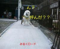 moblog_8aa1866b.jpg