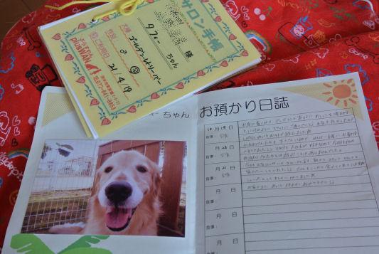 wa1_20121023180800.jpg