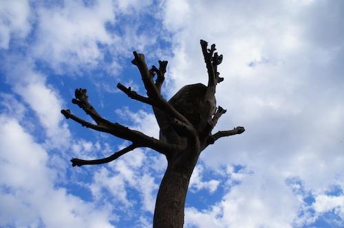 arbre metal
