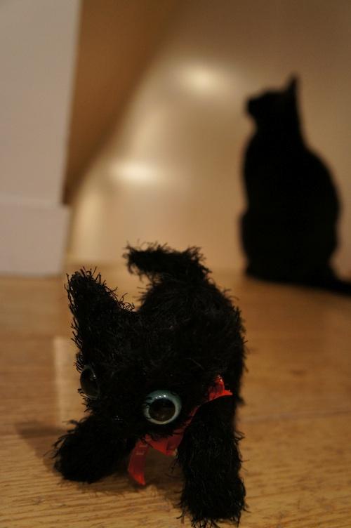 catcat4.jpg