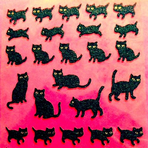 sealcat2.jpg