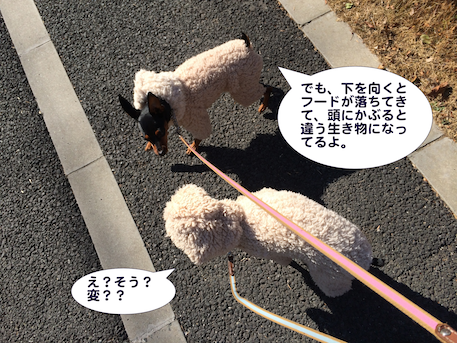20140125-1.png