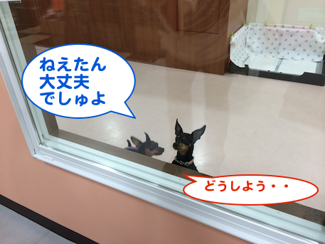 20140202-2.png