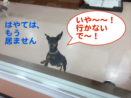 20140202-5.png
