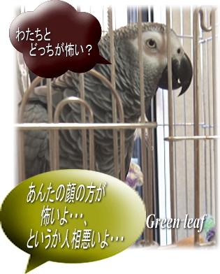 youmuaa_20110813154245.jpg