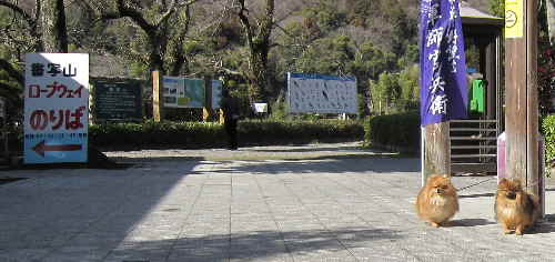 syosyazan1.jpg