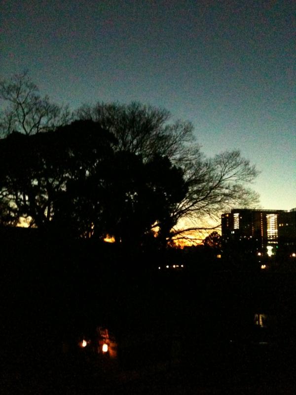 品川神社 夕方