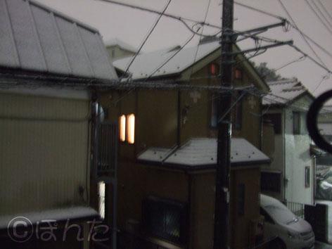 2010雪_2