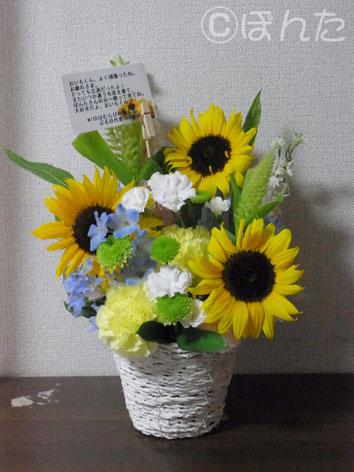 おいも_お花1