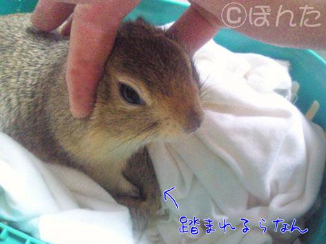 ぴきぴき_病院