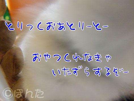 ハロウィン2010_1