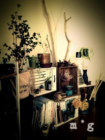 my room-1