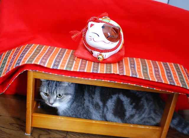 20140105まりんと猫置物