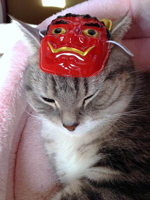 20140131おに猫まりん3
