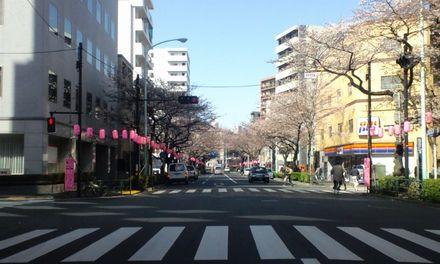 100330_中野通り_3