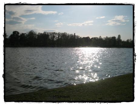 みさと公園川