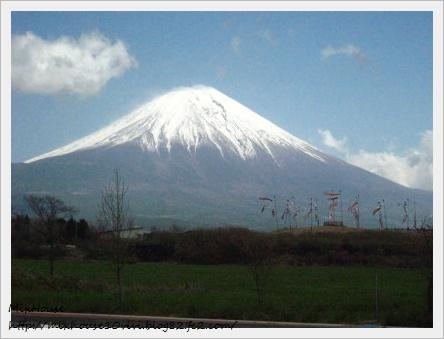 こいのぼり富士