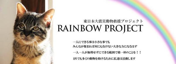 rainbowg.jpg